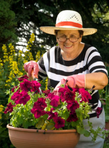 Homecare in Glenview IL: Container Gardens