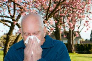 Home Health Care in Glencoe IL: Immune System Boosters