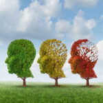 Elderly Care in Deerfield IL: Those Who Have Dementia
