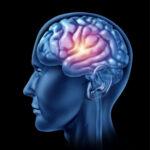 Senior Care in Northbrook IL: Brain Health